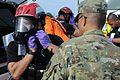 Hawaii National Guard 93rd Civil Support Team Kai Malu O' Hawaii 2017 170131-Z-YU201-0237.jpg