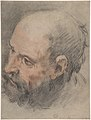 Head of a Bearded Man Looking Left MET DP807365.jpg