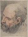 Head of a Bearded Man Looking Left MET DP807365.jpg