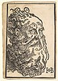 Head of a Bearded Man MET DP826738.jpg