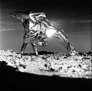 Heinz Mack - Image: Heinz Mack by Lothar Wolleh