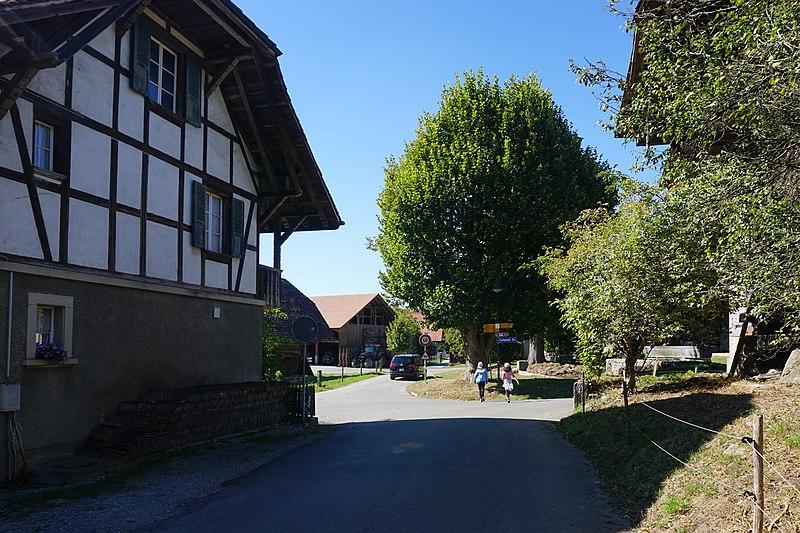 File:Herzwil (2).jpg
