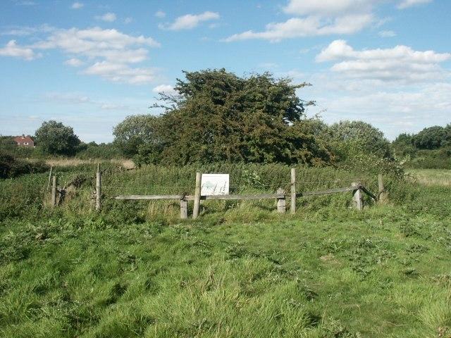 Hethel Thorn, Hethel - geograph.org.uk - 44746