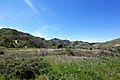 Hiking Towsley Canyon (2324676554).jpg