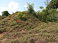 Hill no six-3-mines-yercaud-salem-India.jpg