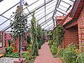 Historisch-Ökologische Bildungsstätte Emsland in Papenburg 2013 by-RaBoe 013.jpg