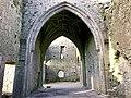 Hore Abbey, Caiseal, Éire - 45671396875.jpg