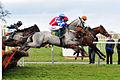 Horse racing (3309217425).jpg