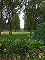 Houghtons Winery Grounds SMC.jpg