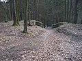 Hrad Zlenice, vstupní cesta (01).jpg