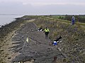 Humber Foreshore at Goxhill Haven - geograph.org.uk - 1562758.jpg
