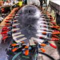 IYRS-Carbon-Fiber-Paddleboard.png