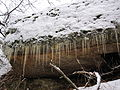 Icicles on rock.JPG