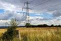 Iknield Way Trig - geograph.org.uk - 221879.jpg