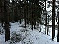 Imanta, Kurzeme District, Riga, Latvia - panoramio (28).jpg