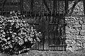Ingelfingen und drum rum, 2014 (14667686934).jpg