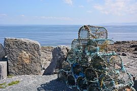 Inisherr fishing traps.jpg