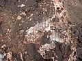 Intergranular calcite in autobrecciated amygdaloidal tholeiite basalt aa lava flow top (flow B, Two Harbors Basalts, North Shore Volcanic Series, Mesoproterozoic, 1097-1098 Ma; Burlington Bay, Two Harbors, Minnesota, USA) 10.jpg