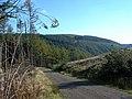 Into the Stinchar Valley - geograph.org.uk - 260689.jpg