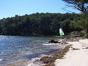 Cortegada Island - Image: Isla de Cortegada