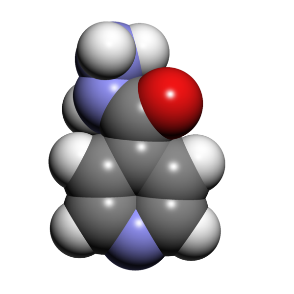 File:Isoniazid 3d.png