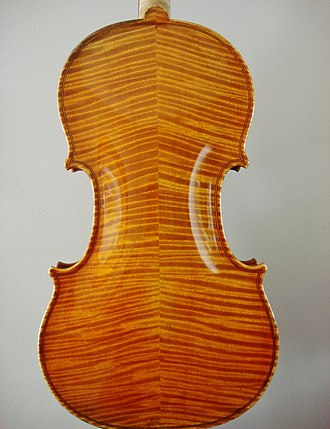 Flame maple - Backside view of a violin