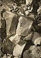 Jędrzejów. Hebrajskie książki w ruinach domu 1941.jpg