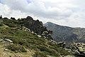 J28 814 Regajo del Guarro, Alto de Castilfrío.jpg