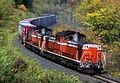 JNR DD51 1161 20031010.jpg