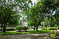 Jackson Square - Stay 6 Feet Apart - New Orleans May 2021.jpg