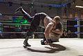 Jake Roberts DDT 2013.jpg