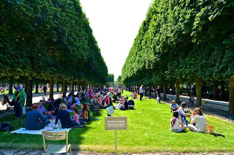 פיקניק רגוע בגני לוקסמבורג (צילום: Paris 16)