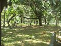 Jax FL Evergreen Cem02.jpg