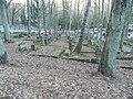 Jewish Cemetery in Sopot - panoramio (8).jpg