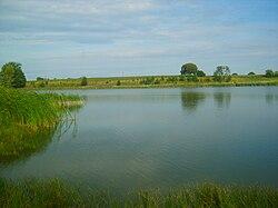 Jezioro Proboszczowskie.JPG