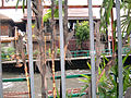 Jim Thompson House complex rear fence.JPG