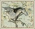 Johannes Hevelius - Pegasus.jpg