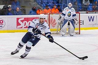 Jurij Repe Slovenian ice hockey player