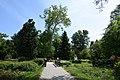 Kámoni Arborétum Szombathely Kamon Arboretum Park 03.jpg