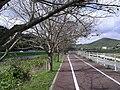 KANDE-YAMADA cycling way.JPG