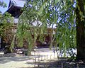 Kaidanin 200607050420.JPG