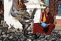 Kathmandu, Nepal, Kaathe Swyambhu, Buddhist monk and pigeons.jpg