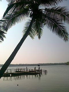 Kavvayi Backwaters island in India
