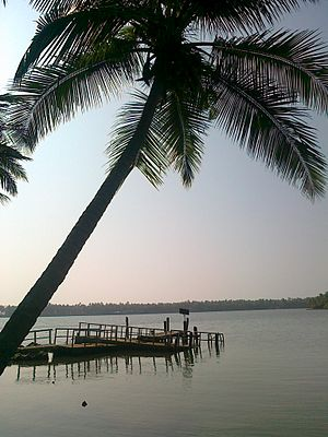 Kavvayi Backwaters - Kavvayi boat jetty