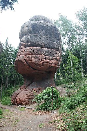 "Mushroom rock - The Kelchstein (""Chalice Rock"") near Oybin, Lusatian Mountains, Germany"