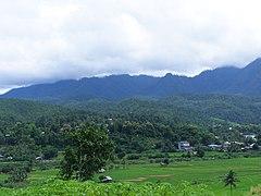 Wikipedia:Dự án/Thái Lan