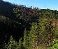 Kik - panoramio (3).jpg
