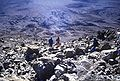 Kilimanjaro back to KiboHut.jpg