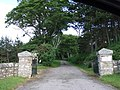 Kintradwell Lodge driveway - geograph.org.uk - 483468.jpg