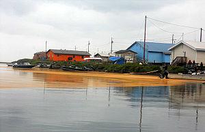 "Kivalina, Alaska - ""Orange goo"""